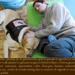 Blinden-geleidehond-Raf.017